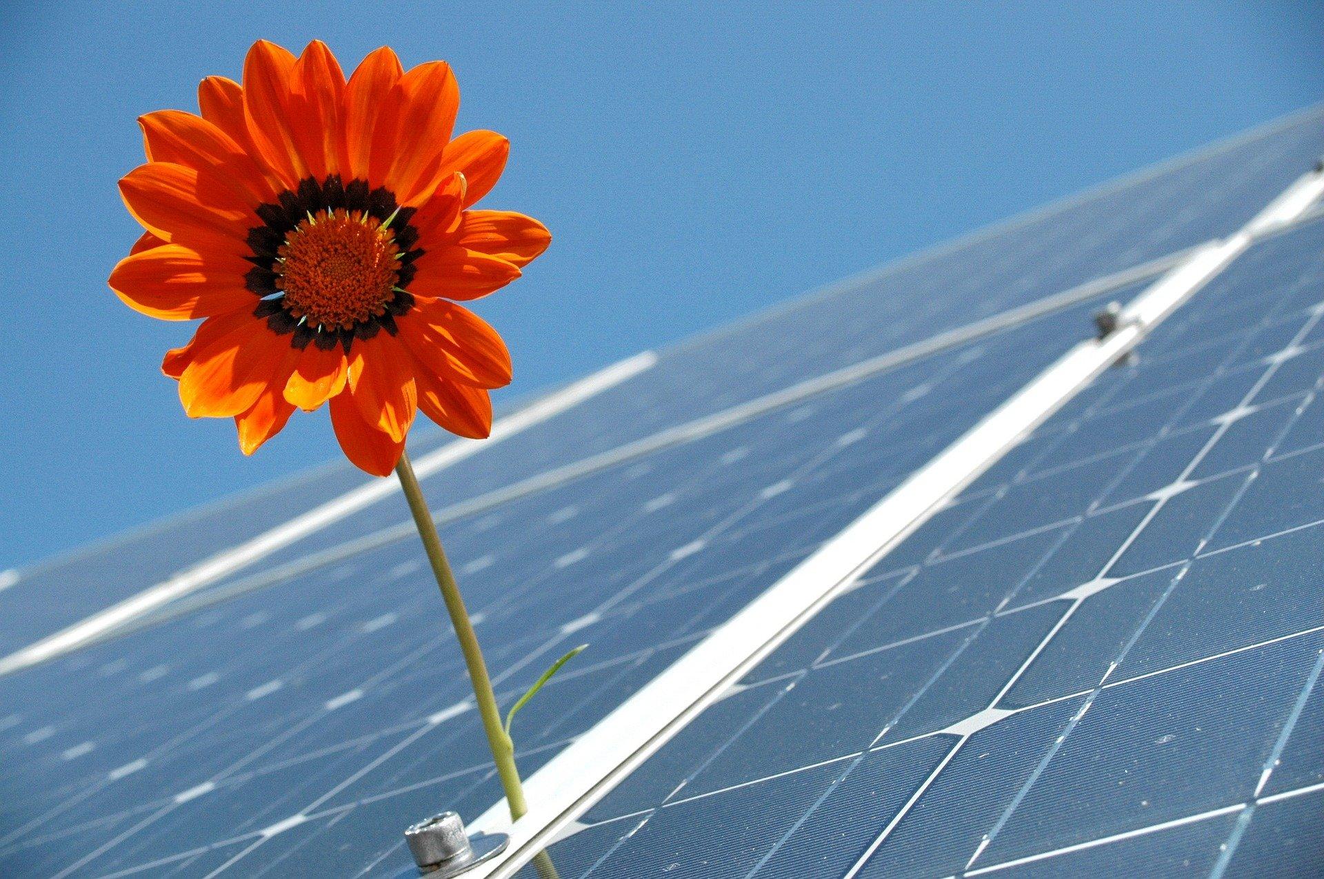Pflicht zum Vorhalten von Photovoltaikanlagen